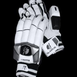 Blackfern gloves 1