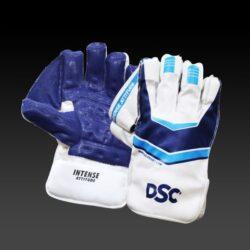 dsc wicket keeping gloves attitude 6 1