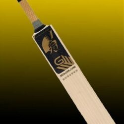 gladius goldflare english willow 7 star bat 939 1